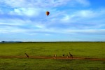 6 Day Masai Mara & Rift Valley Lakes Camping Safari