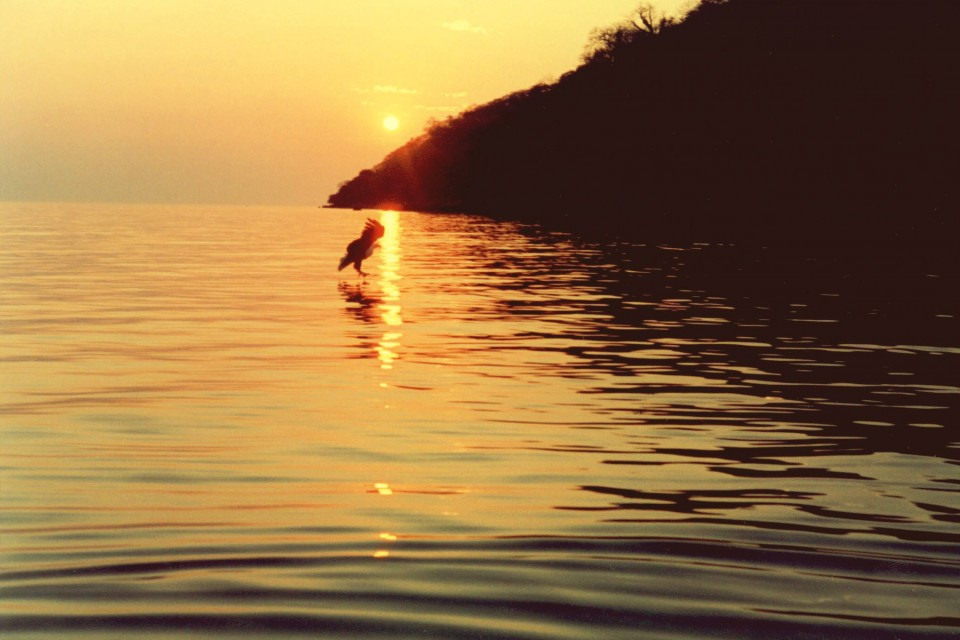 Lake Malawi sunset  by Rian (Ree) Saunders