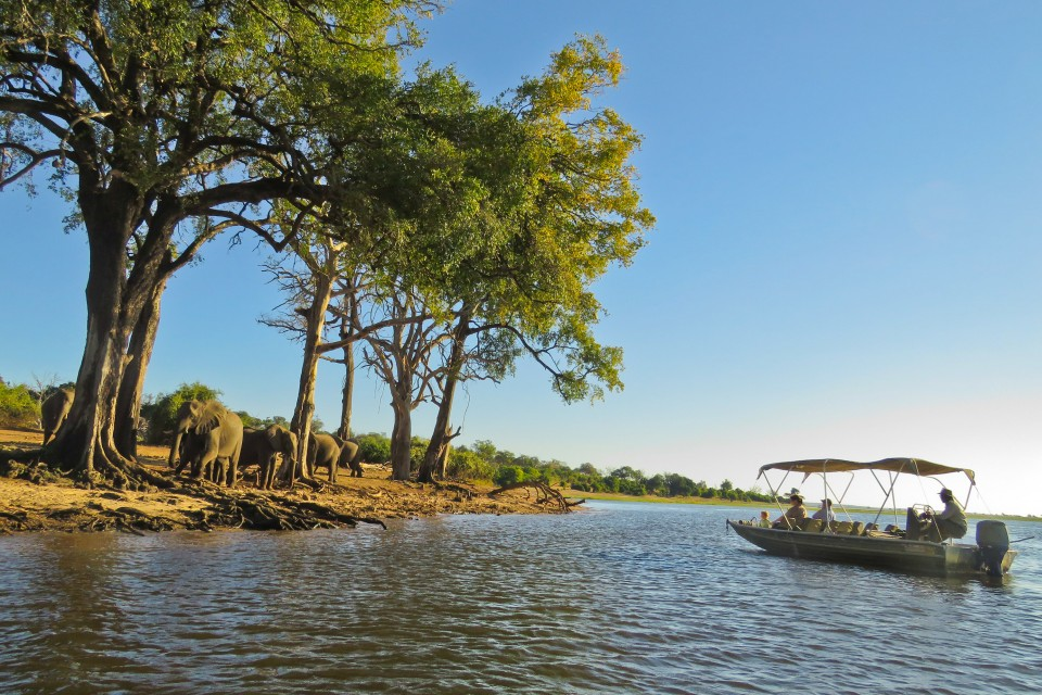 Chobe cruise
