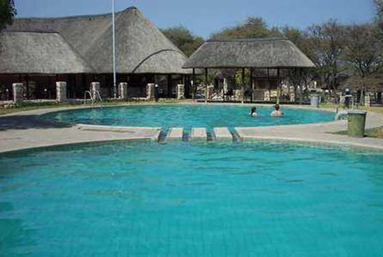 Etosha camp pool