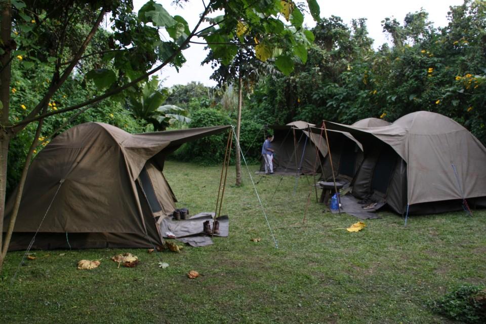 Bwindi campsite