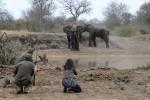 4 Day Kruger Park Walking Safari