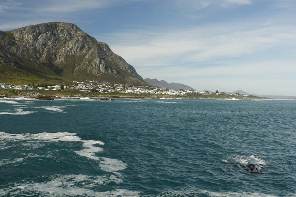 Self drive tour cape town to garden route pe - Drive from port elizabeth to cape town ...