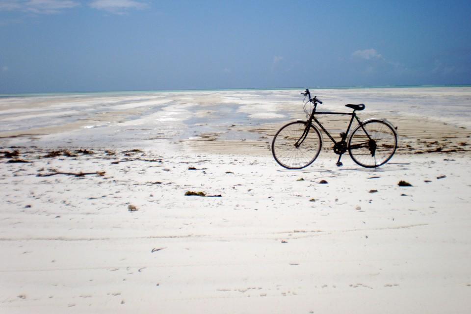 Zanzibar beach  by hfordsa
