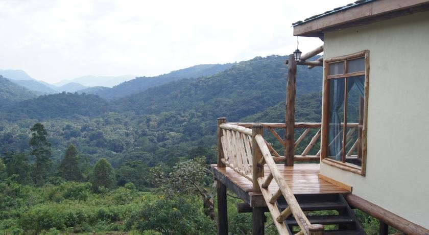 Bwindi lodge view