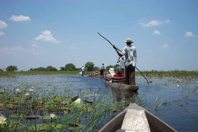 Okavango Delta mokoro image