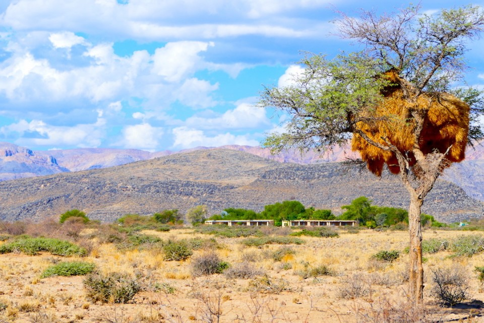 Desert accommodation